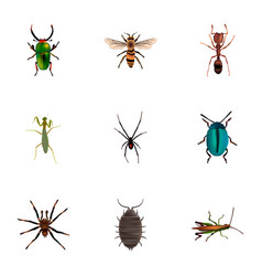 set of insect realistic symbols with mantis bug vector image
