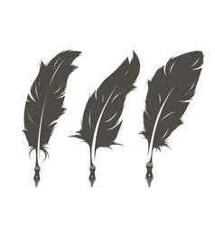 set three isolated feathers for writing vector image