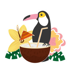 toucan and flowers coconut cocktail tropical vector image