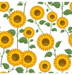 Sunflowers seamless pattern vector image vector image
