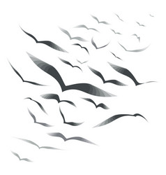 flock of birds on a white background vector image