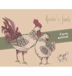 Rooster hen chicken vector image vector image