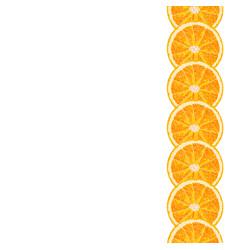 seamless decorative border of orange slice vector image vector image