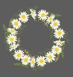Chamomile flowers wreath on grey background vector