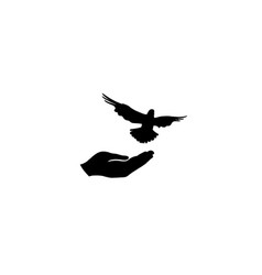 dove bird free with hand pigeon flighing peace vector image
