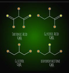 glycerol gliceric acid tartonic acid structural vector image