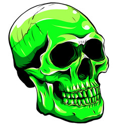 green color skull head with vector image