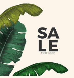 Sale tropical summer poster with jungle leaves vector