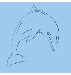 Sketched jumping dolphin vector