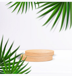 Wooden podium with palm leaves and shadows vector