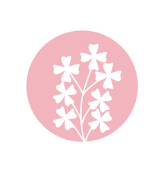 cute flower natural icon vector image