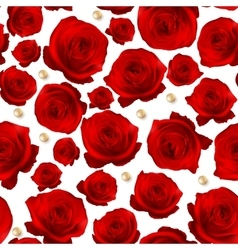 Red Rose seamless background EPS 10 vector image