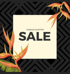 tropical summer sale with heliconia sunset orange vector image vector image