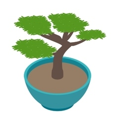 Bonsai tree icon isometric 3d style vector image vector image