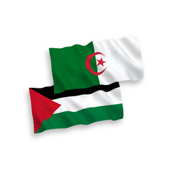 Flags palestine and algeria on a white vector