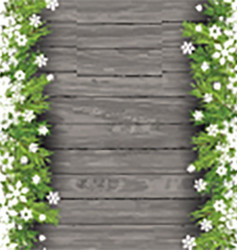 christmas tree branches on wood background 0411 vector image vector image