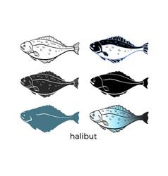 halibut set vector image