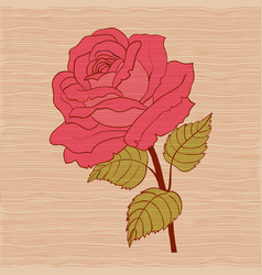 red rose cartoon style on wooden background vector image