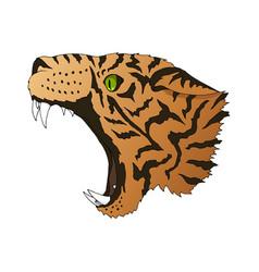 Angry leopard portrait tiger predator head vector