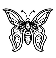 butterfly vintage concept vector image