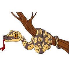 Cartoon snake on a tree branch vector image