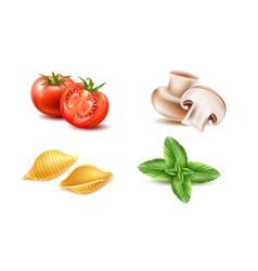 conchiglie pasta tomato basil mushroom set vector image