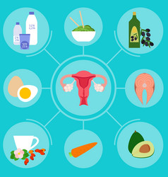 infographics with foods helpful for female vector image