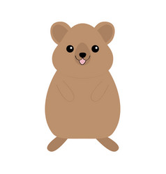 qokka cute cartoon kawaii funny character smiling vector image