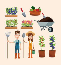 set farmers plants wheelbarrow vector image