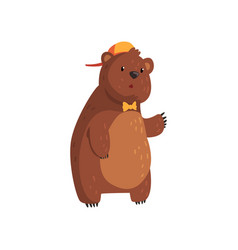 teen bear standing isolated on white cartoon vector image vector image