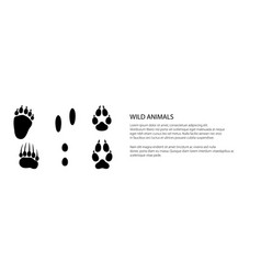 Banner traces forest animals vector