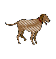 Drawing cartoon dog walking pet animal vector