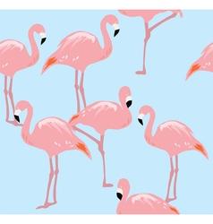 Flamingos two b vector