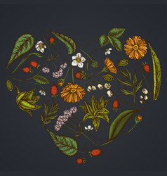 Heart floral design on dark background with aloe vector