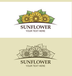 sunflower icon set vector image