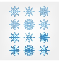 set snowflakes isolated vector image