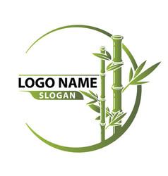 bamboo logo template vector image