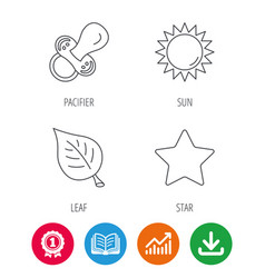 Leaf star and sun icons vector