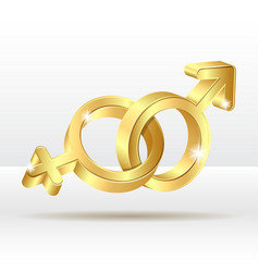 Male female symbol vector image