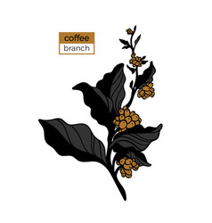template branch coffee 3color vector image