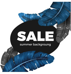 sale summer background text written on black vector image