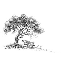 A bench under the tree park or garden wallpaper vector