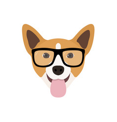 Corgi dog in fashions glasses funny dog icon vector