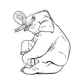 Elephant show vector
