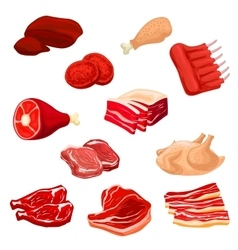 Fresh meat icons of beef pork poultry mutton vector