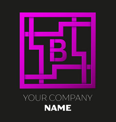 Letter b symbol in colorful square maze vector