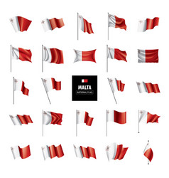malta flag on a white vector image