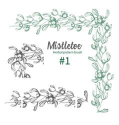 set of hand drawn botanical sketch mistletoe vector image