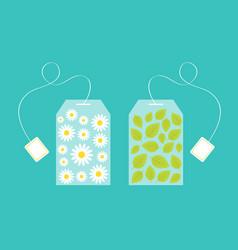 Tea bag herbal chamomile daisy camomile flower vector