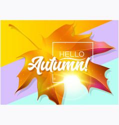 hello autumn autumn design with yellow maple vector image